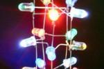 クリスマスツリーを作るワークショップが開催されます!