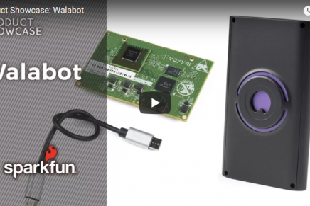 Friday Product Post: Rocko the Walabot